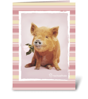 You had me at hello! greeting card