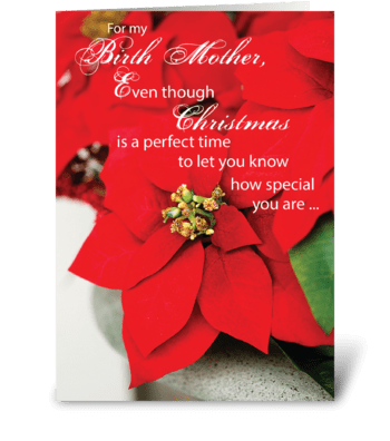 Birth Mother Christmas Poinsettia greeting card