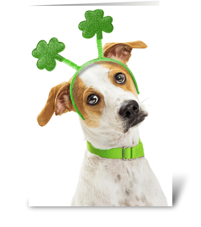 Lucky to Have You on St. Patrick's Day greeting card