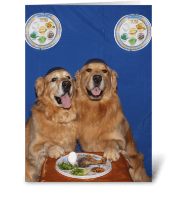 Golden Retriever Passover Seder Blessing greeting card