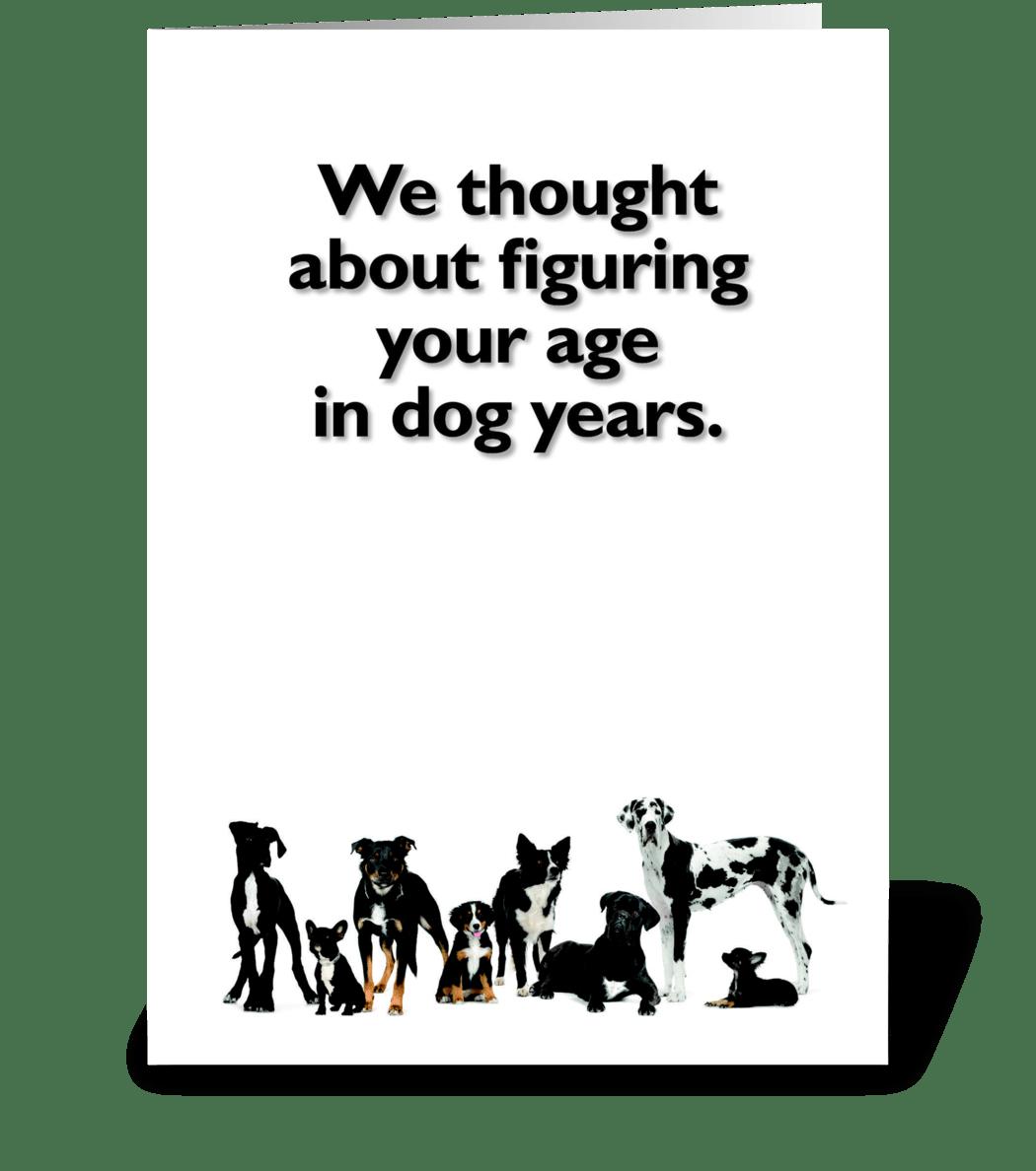 Happy Birthday For Dog Lover