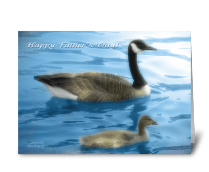 Happy Father's day geese greeting card