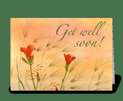 Looking Skyward greeting card