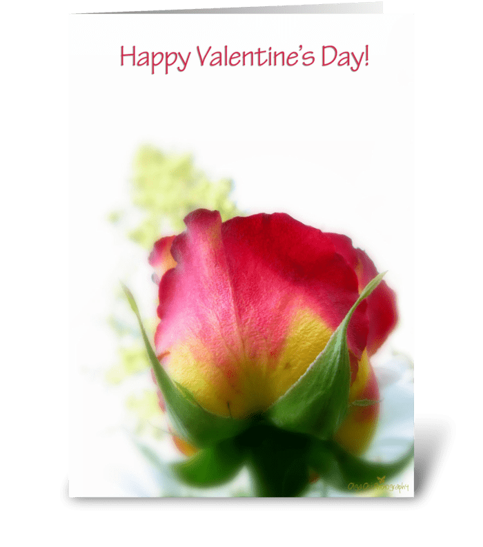 Rose uplifting greeting card