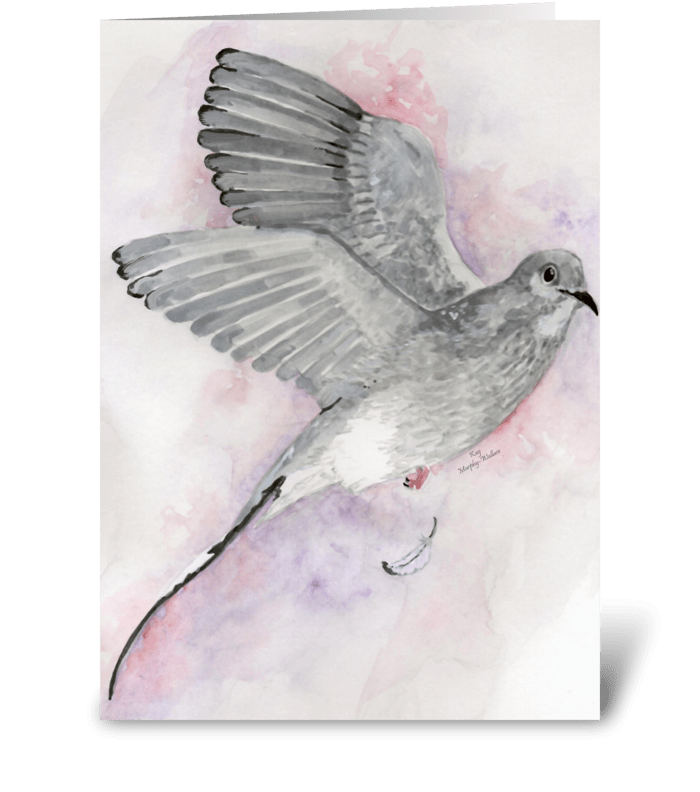 Gray Dove greeting card