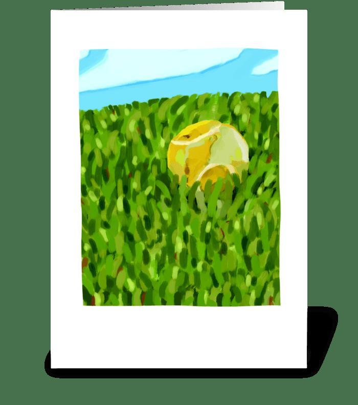 Ball Sympathy greeting card