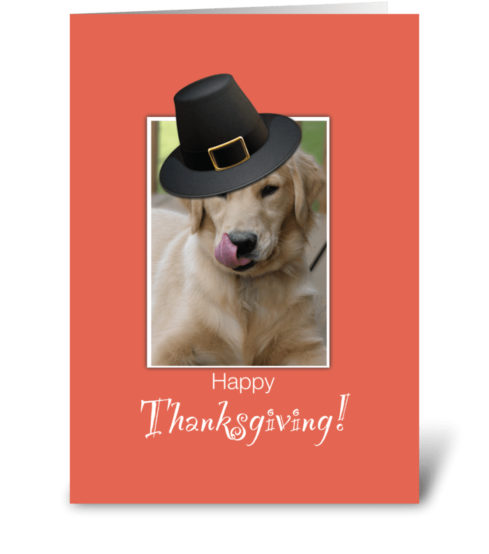 Funny Dog Thanksgiving, Humorous greeting card