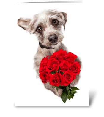 Cute Dog Delivering Flowers All Purpose  greeting card