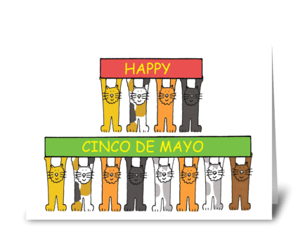 Cinco de Mayo fun cats. greeting card