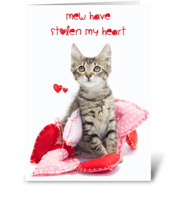 Mew Stole My Heart kitten Valentine greeting card