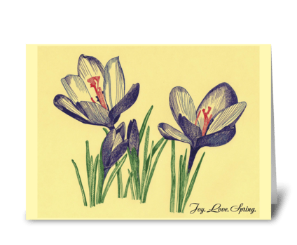 Spring_flowers-crocuses-drawing greeting card
