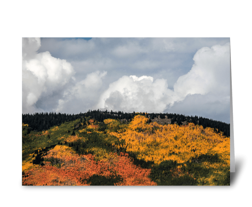 Colorful Autumn Leaves greeting card