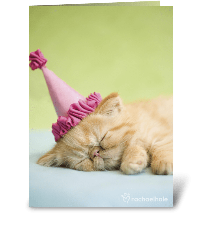 Happy Birthday Kitten In Party Hat Greeting Card