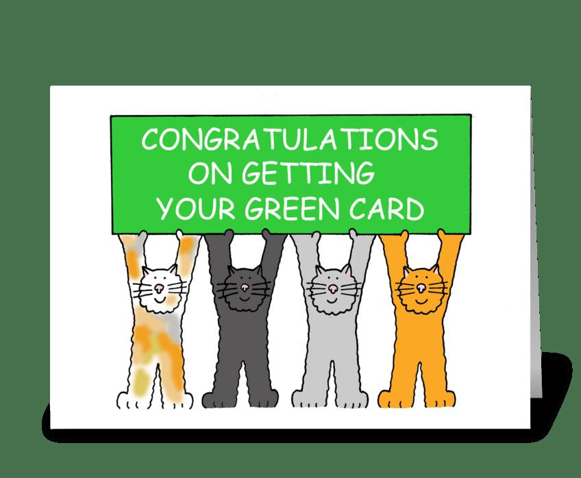 Green Card Congratulations, Cartoon Cats greeting card