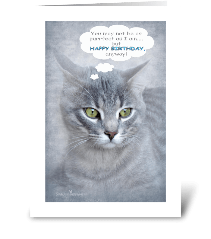 Happy Birthday for cat lovers greeting card