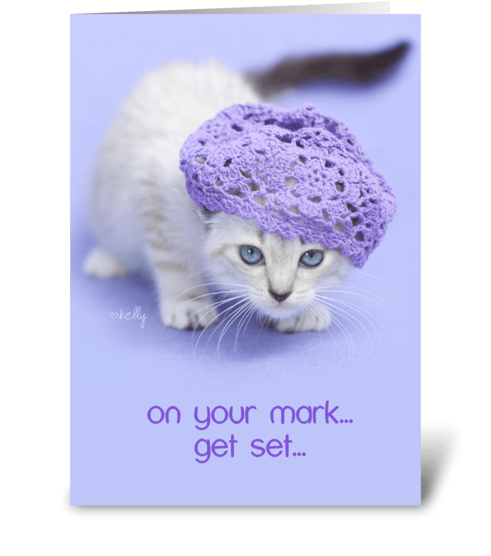 On your mark... Birthday CAKE kitten greeting card