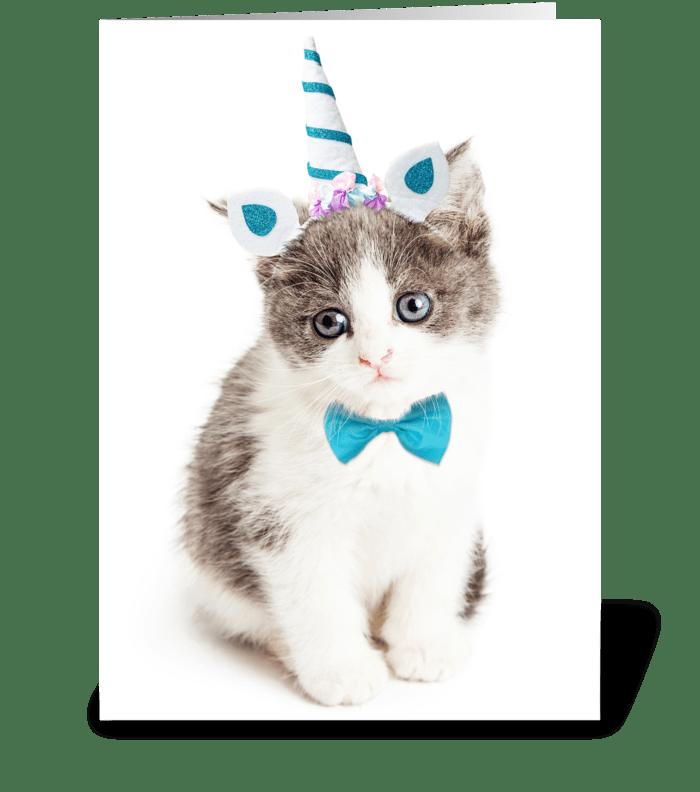 Cute Kitten Birthday Card greeting card