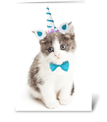 Cute Kitten Birthday Card greeting card