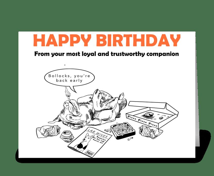 Labrador Birthday Card greeting card