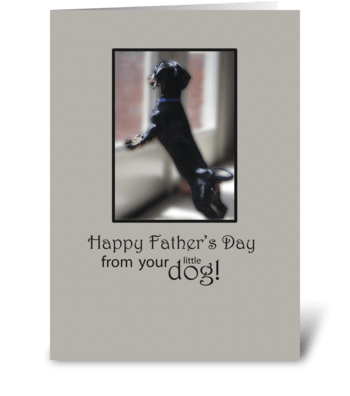 Father's Day From Little Dog in Window greeting card