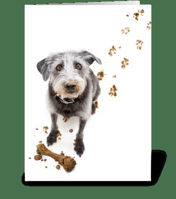 Dirty Dog Digs Birthday Gift greeting card
