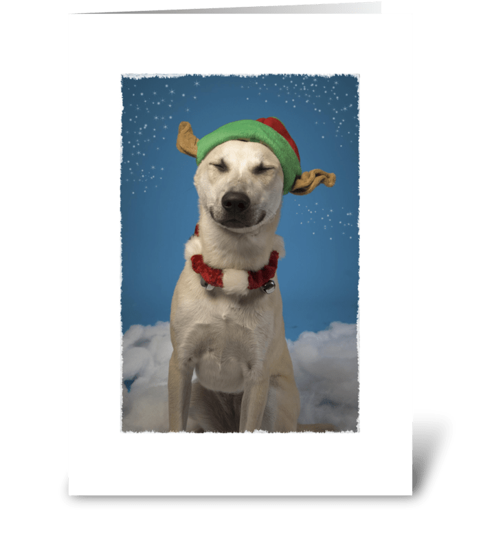 Holiday Spirit with Cute Dog greeting card