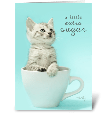 Extra Sugar Sweet Kitten Birthday Card greeting card