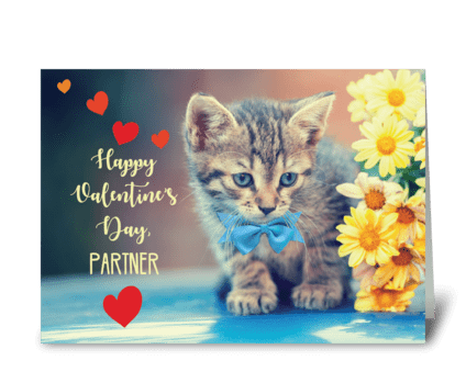 Partner Love Valentine Kitten greeting card