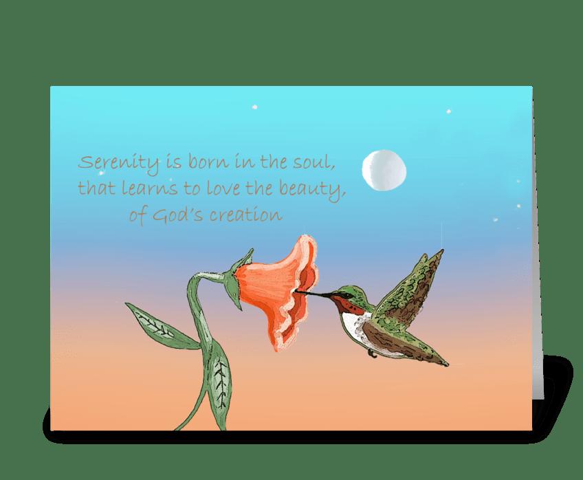 Hummingbird at dusk greeting card