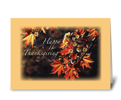 Thanksgiving Leaves on Branches greeting card