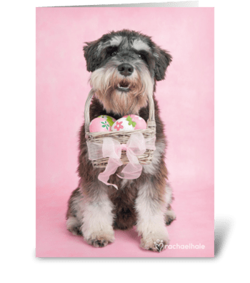 A Warm Easter Wish greeting card