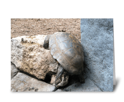 Rock and a Hard Place Encouragement Card greeting card