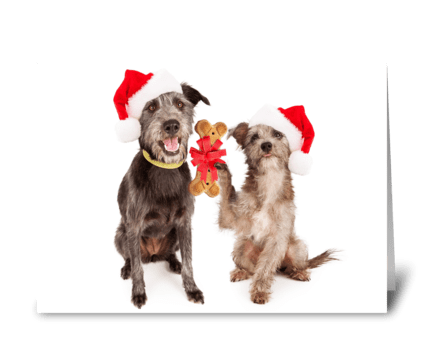 Dog Friends Exchanging Christmas Gifts greeting card