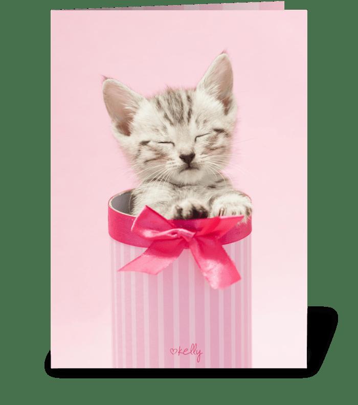Surprise kitten greeting card