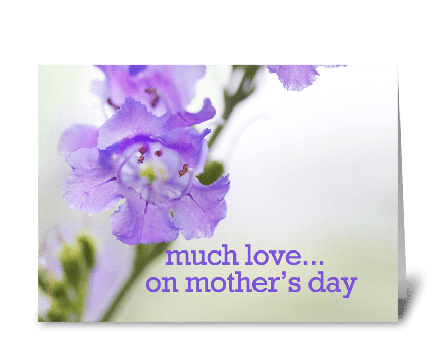 Much Love... On Mother's Day greeting card