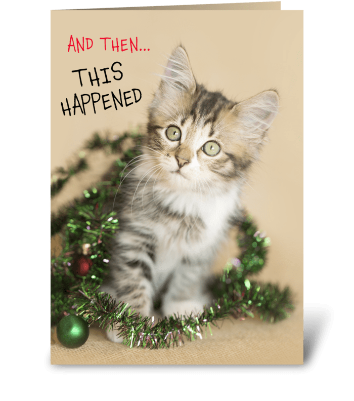 Then This Happened Silly Kitty greeting card