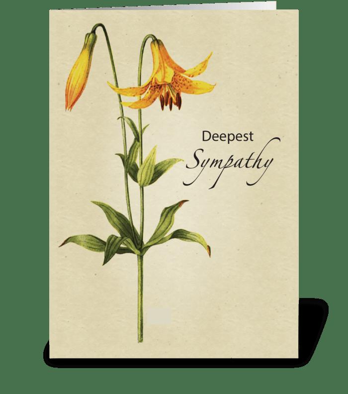 Lily Botanical Sympathy greeting card