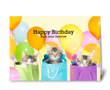 Happy Birthday from your favorite Kitten greeting card