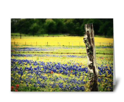 Blue Along the Highway greeting card