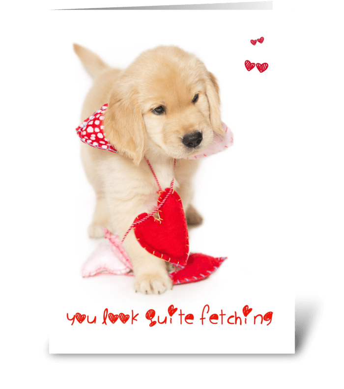 You Look Fetching Puppy Valentine greeting card