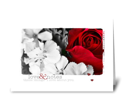 Red Rose Photography greeting card
