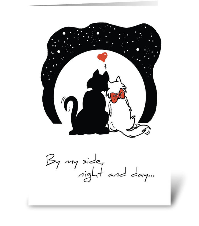 Wedding Anniversary, Cats greeting card