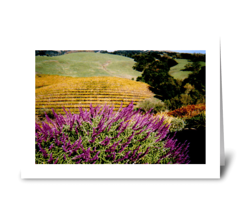 Napa Valley in Autumn greeting card