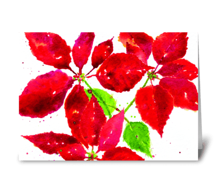 Christmas Poinsettia greeting card
