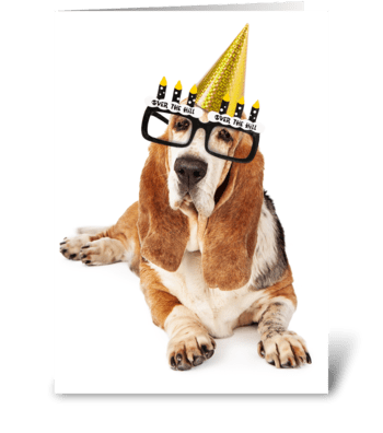 Old Basset Hound Dog Happy Birthday greeting card
