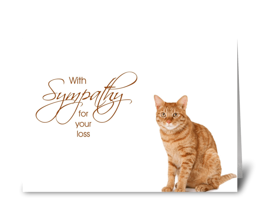 With Sympathy - loss of cat greeting card