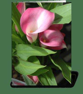 Cala Lilies greeting card