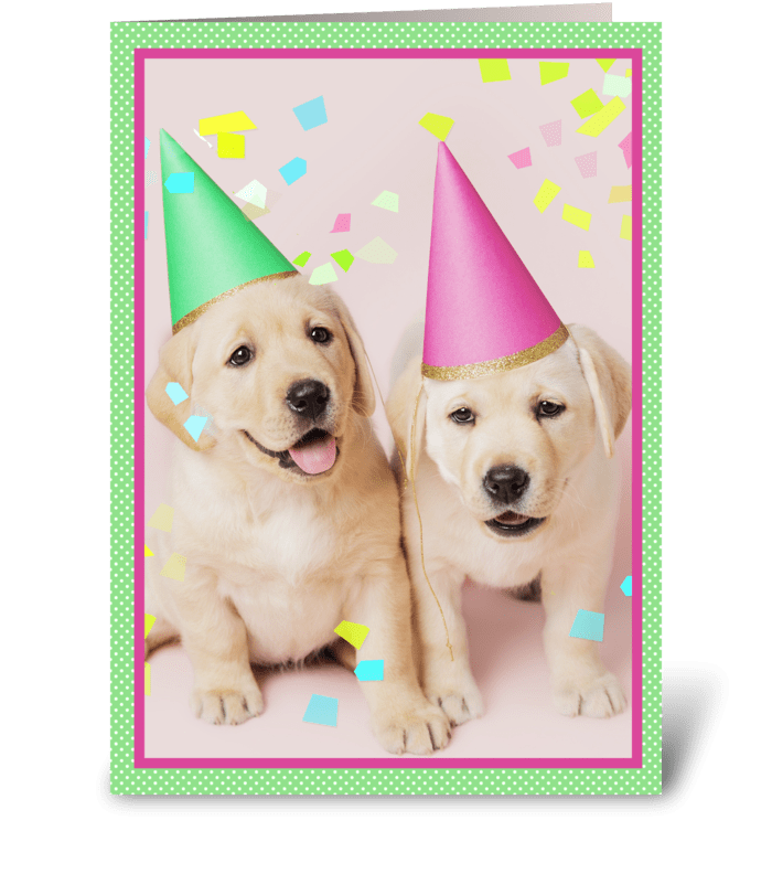 Confetti Sprinkles Birthday Puppies greeting card