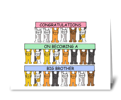 Congratulations you're a  a big brother. greeting card