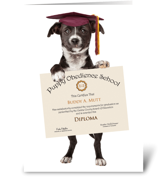 Congratulations on Fetching Your Diploma greeting card